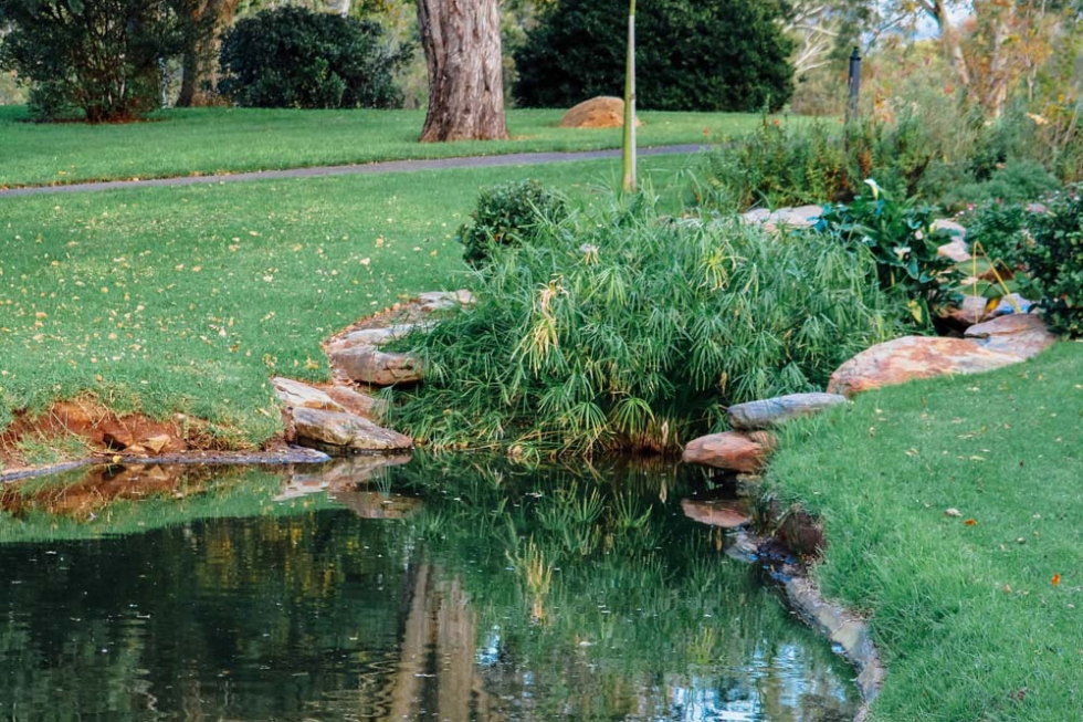 Adelaide Veale Gardens South Australia Moments By Charlie Blog Online Shop Freelance Services