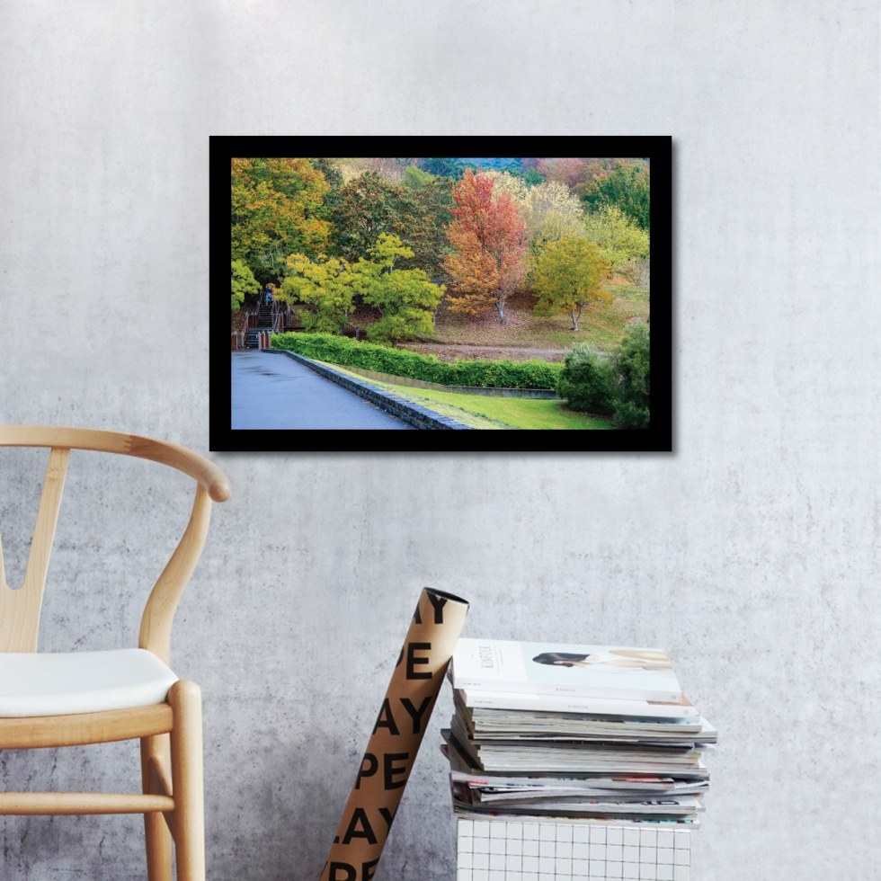 FREE Nature Photo (Digital Download) - Mount Lofty Gardens Autumn Landscape by Photographer Charlie Albright // Moments by Charlie | Art + Fashion + Mindful Living + Photography | Made in Australia