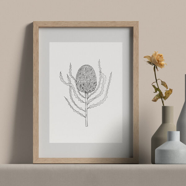 """Moments by Charlie   Journey of Creative Pursuits by South Australian artist Charlie Albright. Banksia Burdettli Flower - Modern Flower Line Art Drawing, Illustration. Framed Fine Art Giclee Print A4 in Natural Oak Coloured 11"""" x 14""""x frame with matt opening 8"""" x 10"""""""