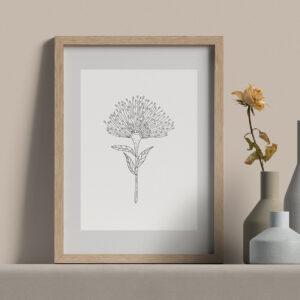 "Moments by Charlie | Journey of Creative Pursuits by South Australian artist Charlie Albright. Bottlebrush Callistemon Flower - Modern Flower Line Art Drawing, Illustration. Framed Fine Art Giclee Print A4 in Natural Oak Coloured 11"" x 14""x frame with matt opening 8"" x 10"""