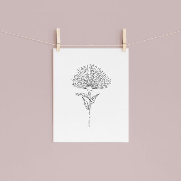 Moments by Charlie   Journey of Creative Pursuits by South Australian artist Charlie Albright. Bottlebrush Callistemon Flower - Modern Flower Line Art Drawing, Illustration. Unframed Fine Art Giclee Print A4
