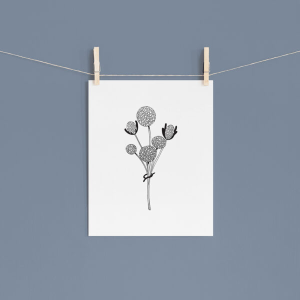 Moments by Charlie | Journey of Creative Pursuits by South Australian artist Charlie Albright. Craspedia Globosa Wildflower Modern Flower Line Art Drawing, Illustration. Unframed Fine Art Giclee Print A4